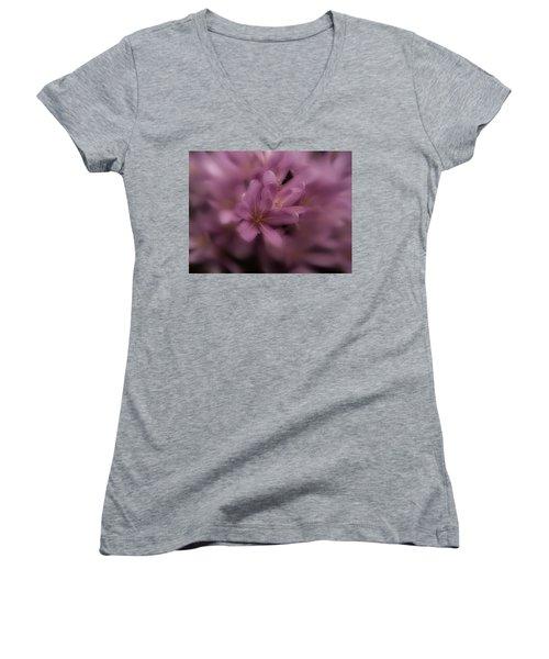 Timeless Women's V-Neck T-Shirt (Junior Cut) by Richard Cummings
