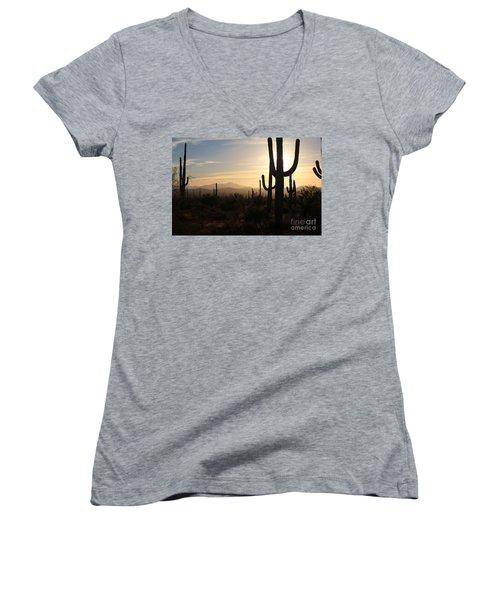 Timeless Women's V-Neck T-Shirt (Junior Cut) by Sheila Ping