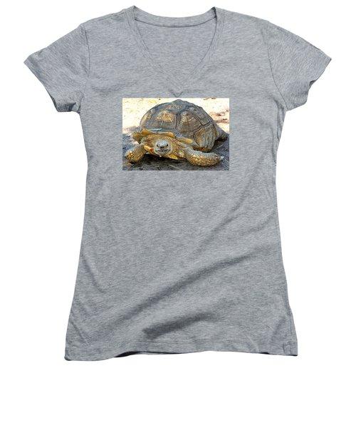 Timothy The Giant Tortoise Women's V-Neck (Athletic Fit)