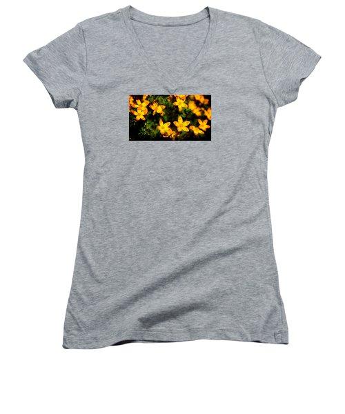 Tiny Suns Women's V-Neck T-Shirt (Junior Cut) by Milena Ilieva