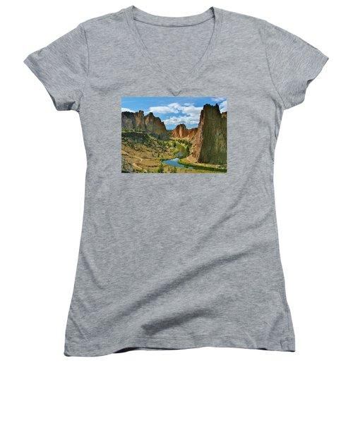 To Dream Women's V-Neck T-Shirt (Junior Cut) by Sheila Ping