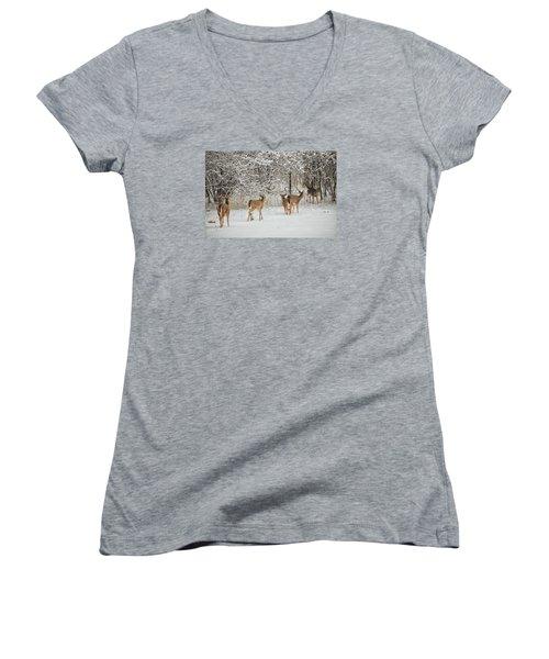 To Greet A Friend Women's V-Neck T-Shirt (Junior Cut) by Nikki McInnes