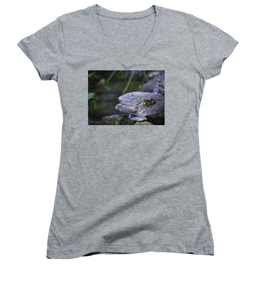 Toading It Up Women's V-Neck T-Shirt (Junior Cut) by Jason Moynihan