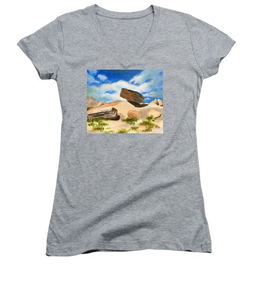 Toadstool Park Nebraska Women's V-Neck