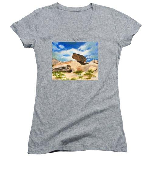 Toadstool Park Nebraska Women's V-Neck T-Shirt