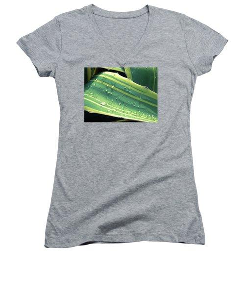 Toboggan Women's V-Neck T-Shirt