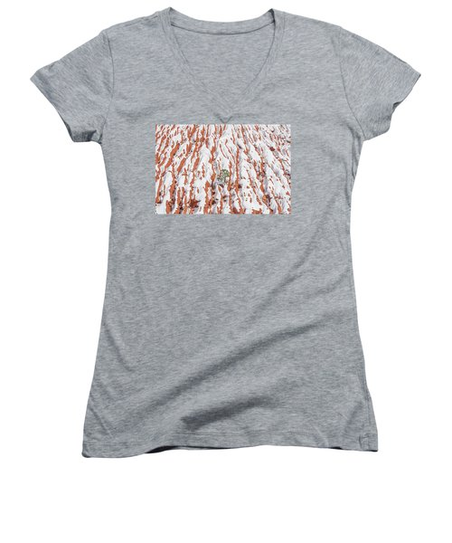 Tonan, The Aztec Goddess Of Winter Solstice  Women's V-Neck T-Shirt