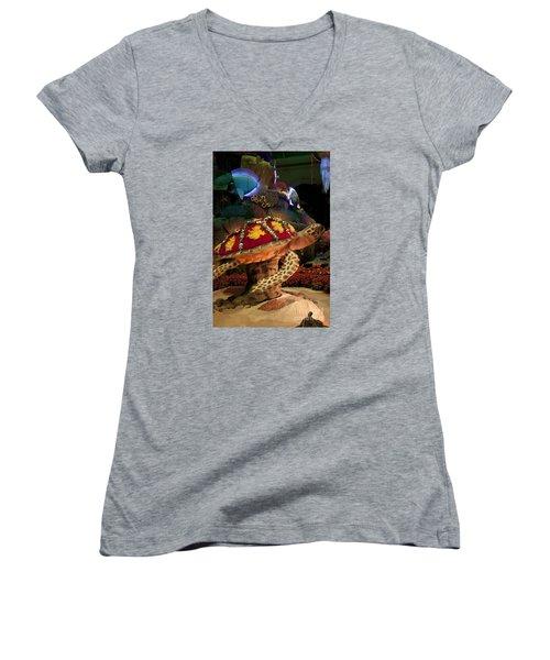 Tortoise In The Garden Women's V-Neck T-Shirt