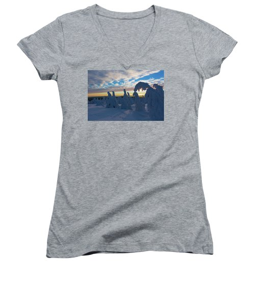 Touched From The Winter Sun Women's V-Neck T-Shirt