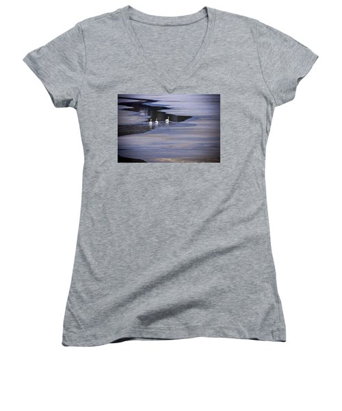 Tourist Swans Women's V-Neck (Athletic Fit)
