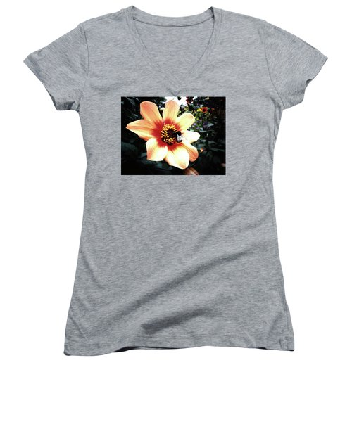 Translucent Wings Women's V-Neck (Athletic Fit)