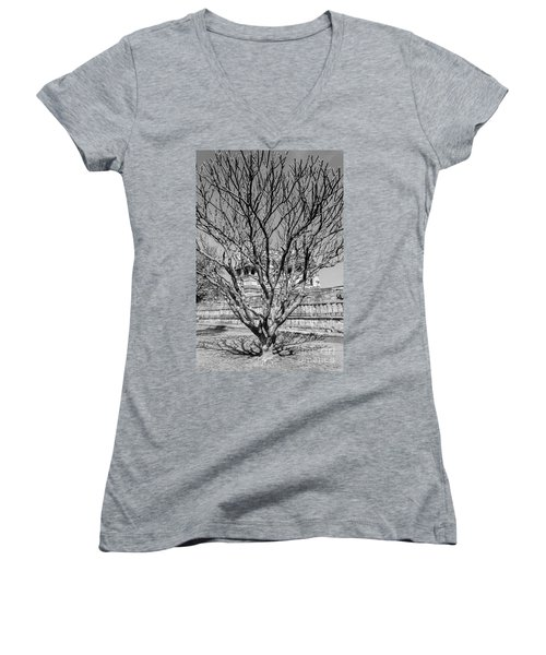Tree And Temple Women's V-Neck