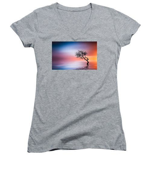 Tree At Lake Women's V-Neck T-Shirt (Junior Cut) by Bess Hamiti