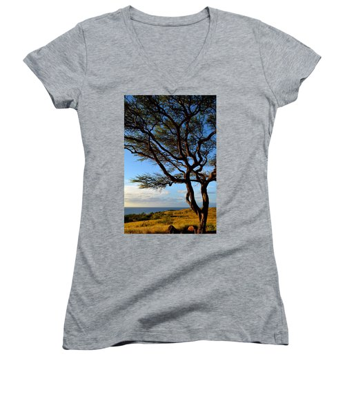 Tree At Lapakahi State Historical Park Women's V-Neck (Athletic Fit)