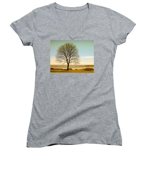 Women's V-Neck T-Shirt (Junior Cut) featuring the photograph Tree At New Castle Common by Nancy De Flon