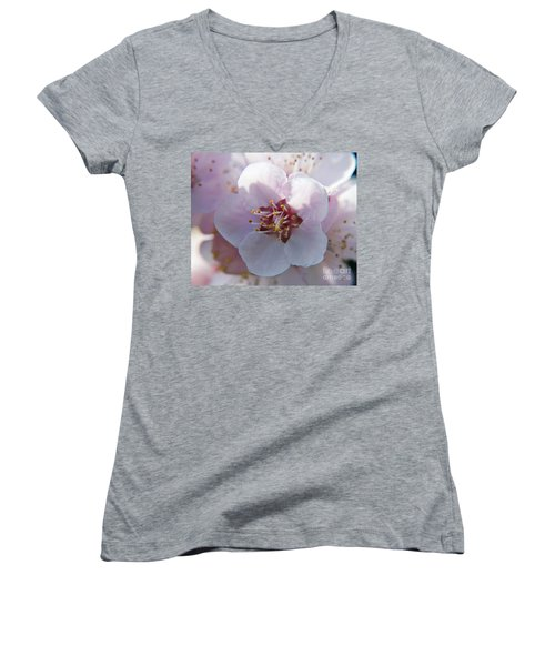 Women's V-Neck T-Shirt (Junior Cut) featuring the photograph Tree Blossoms by Elvira Ladocki