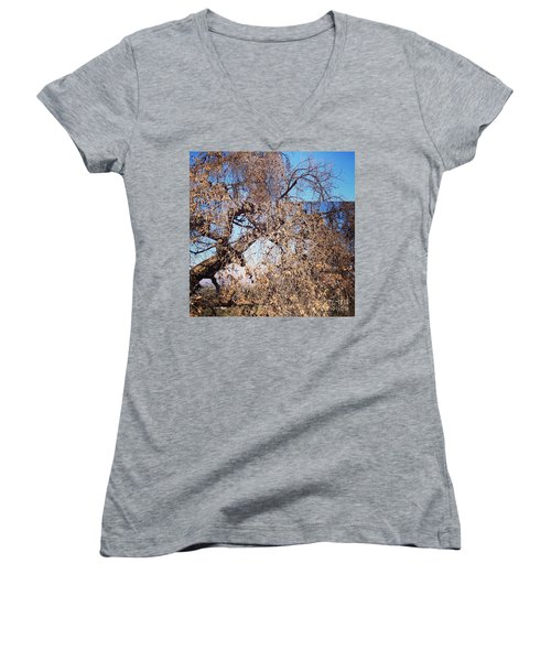 Women's V-Neck T-Shirt (Junior Cut) featuring the photograph Tree Bow And Dance by Nora Boghossian