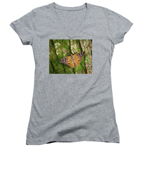 Women's V-Neck T-Shirt (Junior Cut) featuring the photograph Tree Hugger by Bill Pevlor