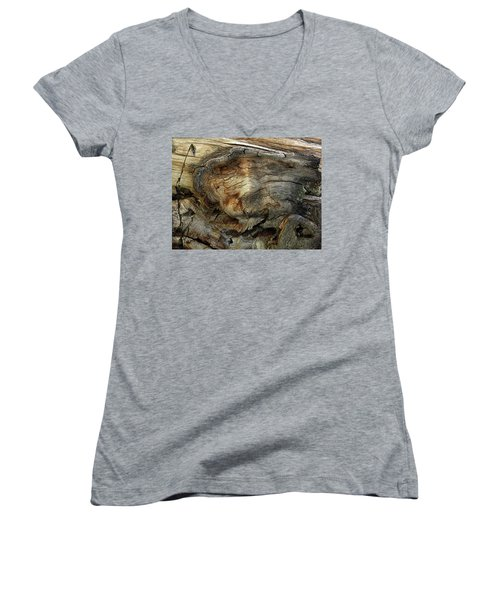 Women's V-Neck T-Shirt (Junior Cut) featuring the photograph Tree Memories # 36 by Ed Hall