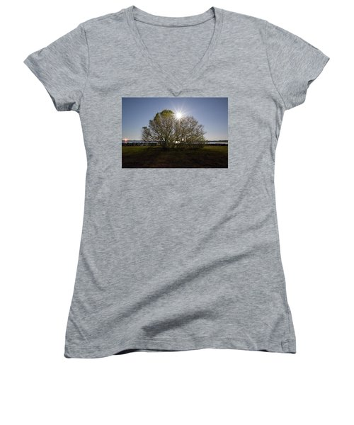 Tree Of The Night Women's V-Neck (Athletic Fit)