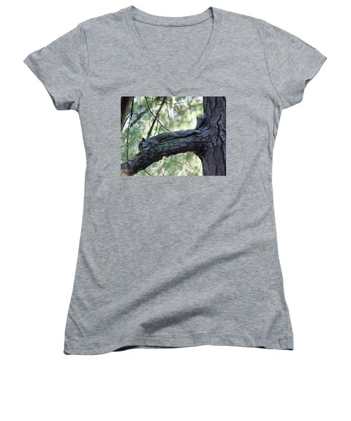 Women's V-Neck T-Shirt (Junior Cut) featuring the photograph  Tree Squirrel by B Wayne Mullins