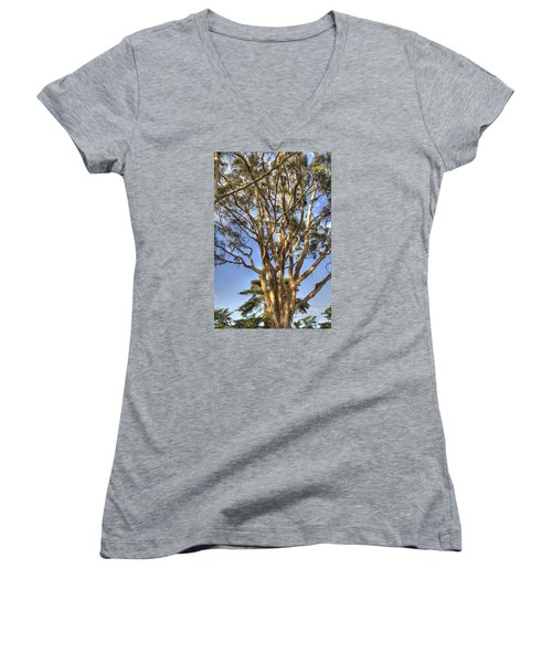 Tree To The Heavens Women's V-Neck