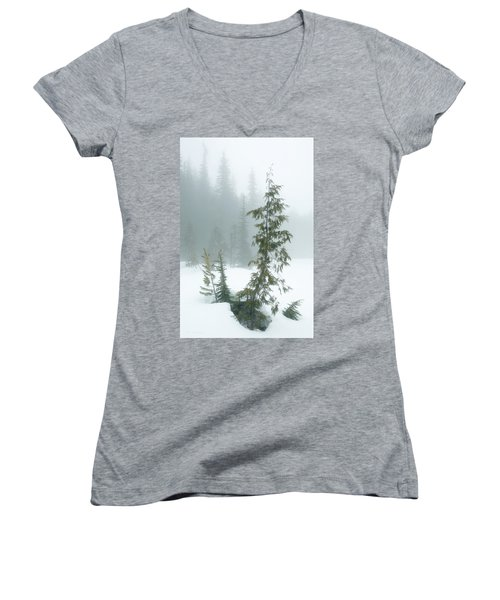 Trees In Fog Women's V-Neck