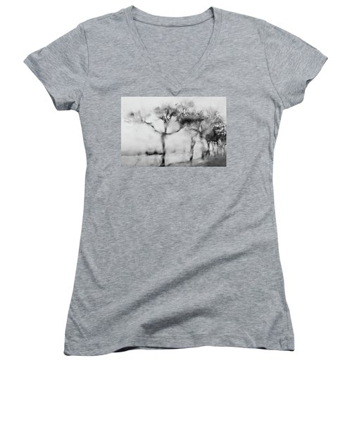 Trees Through The Window Women's V-Neck T-Shirt (Junior Cut) by Celso Bressan