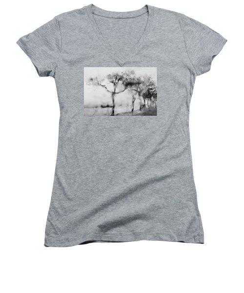 Trees Through The Window Women's V-Neck T-Shirt