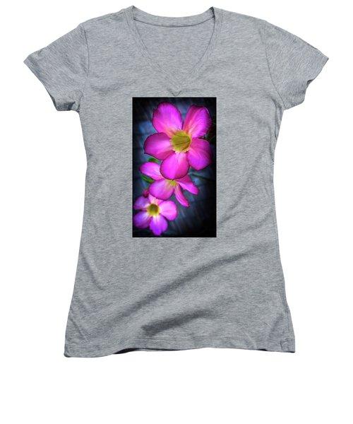 Tropical Bliss Women's V-Neck T-Shirt (Junior Cut) by Karen Wiles