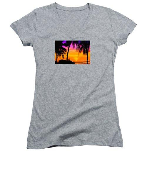 Tropical Delight Women's V-Neck T-Shirt (Junior Cut) by Scott Cameron