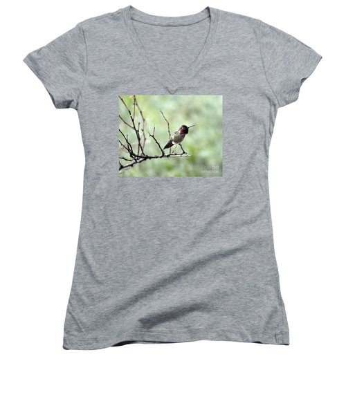 Trumpeting Hummingbird Women's V-Neck T-Shirt