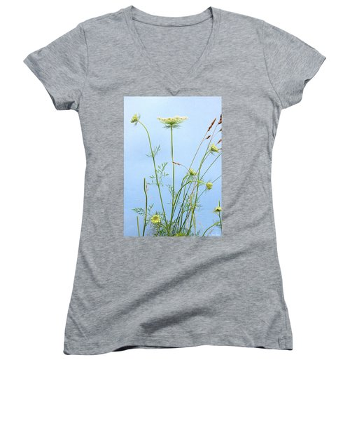 Tuft Of Queen Anne's Lace Women's V-Neck