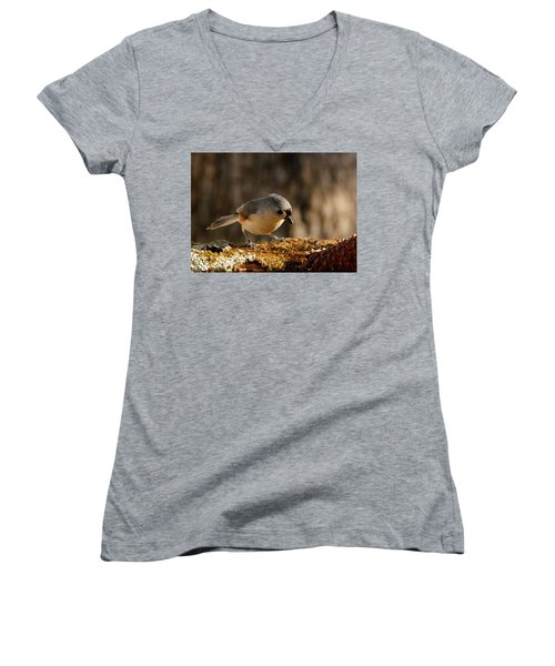 Tufted Titmouse In Fall Women's V-Neck
