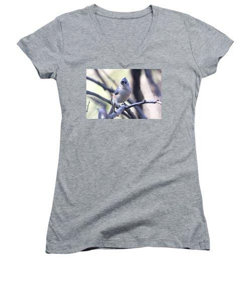 Tufted Titmouse Women's V-Neck T-Shirt (Junior Cut) by Trina Ansel