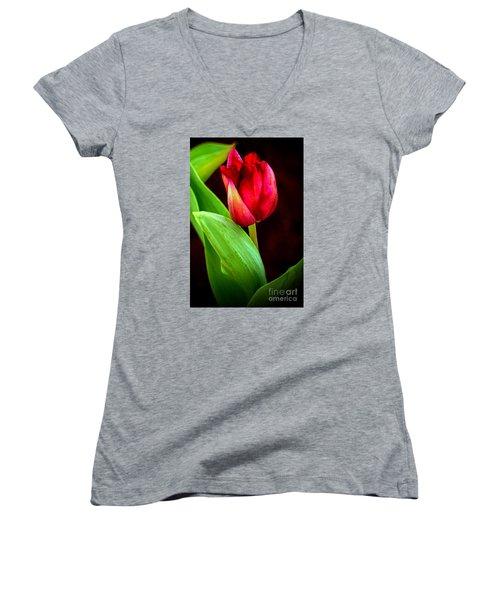 Tulip Caught In The Light Women's V-Neck