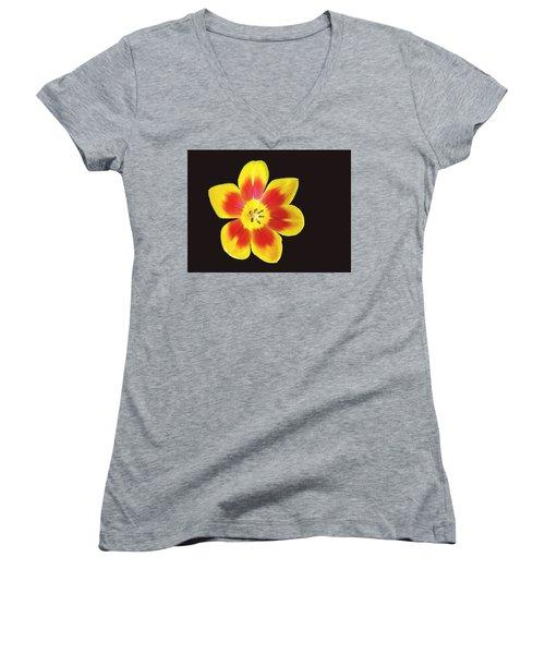 Tulip Women's V-Neck