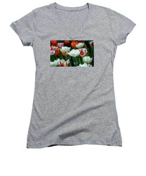 Tulip Flowers Women's V-Neck
