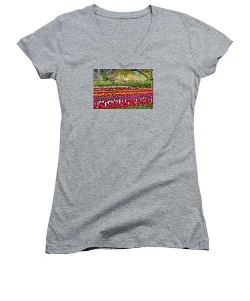 Tulip Mania Women's V-Neck (Athletic Fit)