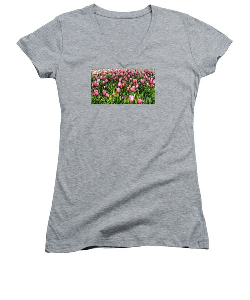 Tulips In Bloom Women's V-Neck