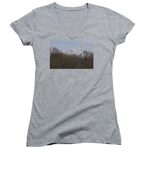 Tundra Swan Trio Women's V-Neck