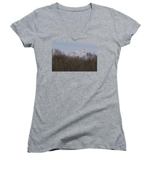 Tundra Swan Trio Women's V-Neck (Athletic Fit)
