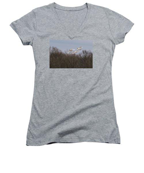 Tundra Swan Trio Women's V-Neck T-Shirt (Junior Cut)