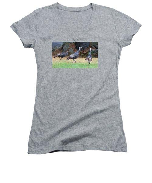 Turkey Trio Women's V-Neck T-Shirt