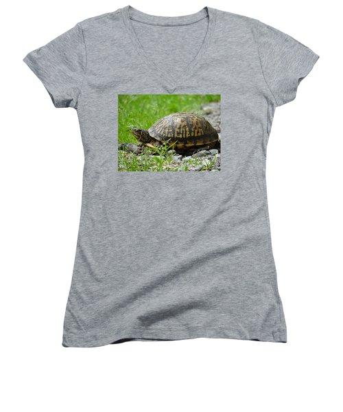 Turtle Crossing Women's V-Neck