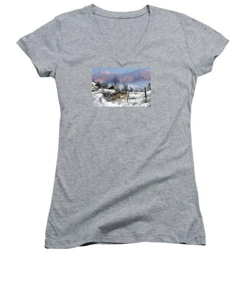 Twain's Barn Women's V-Neck (Athletic Fit)