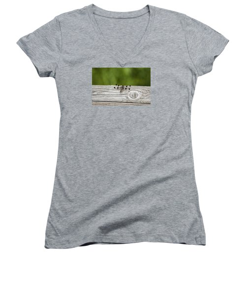 Twelve Spotted-skimmer 20120703_213a Women's V-Neck T-Shirt (Junior Cut) by Tina Hopkins