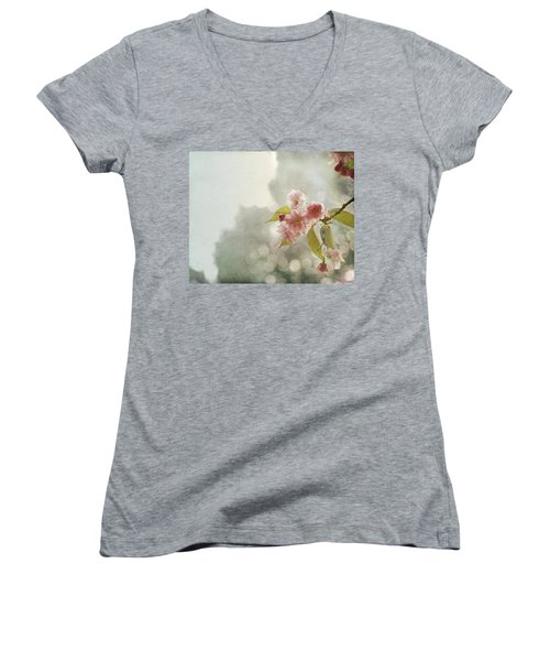 Women's V-Neck T-Shirt (Junior Cut) featuring the photograph Twilight In The Garden by Brooke T Ryan
