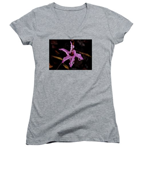 Twinkle, Twinkle Little Star Women's V-Neck T-Shirt