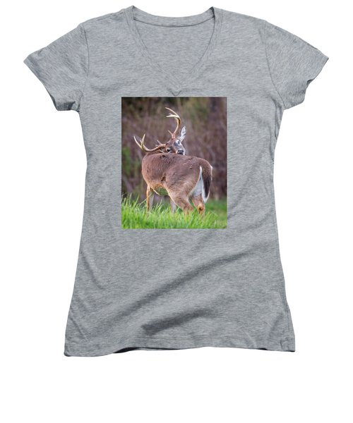 Women's V-Neck T-Shirt featuring the photograph Twisted Buck by Alan Raasch